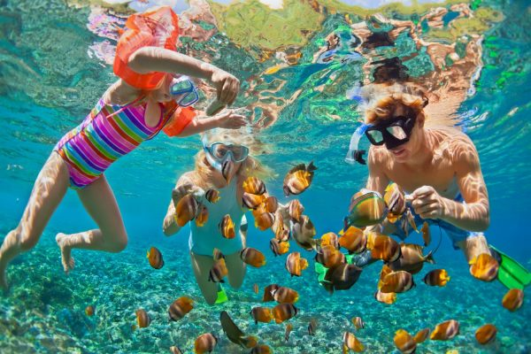 tropical-snorkeling